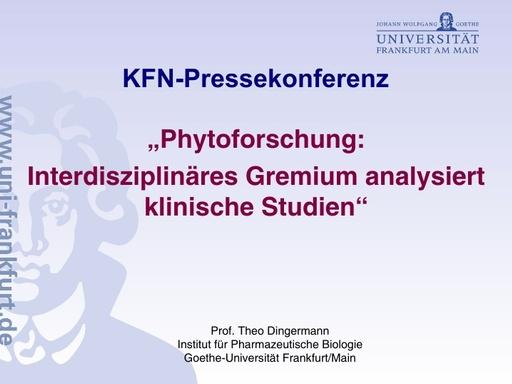 Folien Dingermann (1)