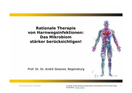 4_Präsentation Prof. Dr. Dr. Gessner_KFN-PK 14.09.2016