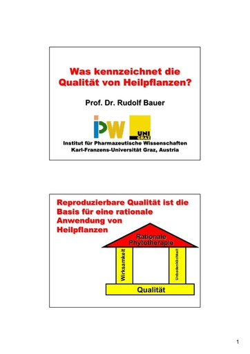 Prof  Bauer Folie
